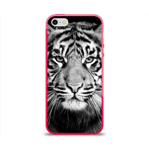 Чехол для iPhone 5/5S глянцевый Красавец тигр Фото 01