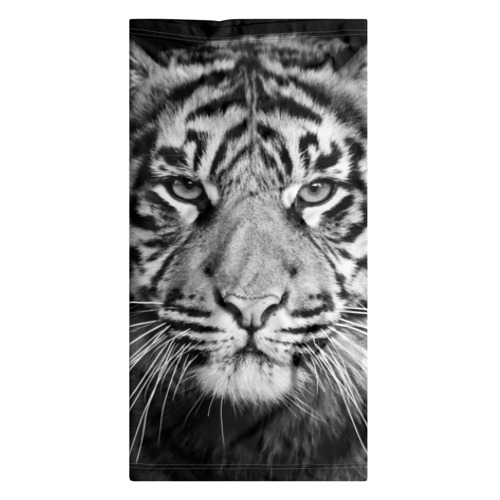 Бандана-труба 3D Красавец тигр Фото 01