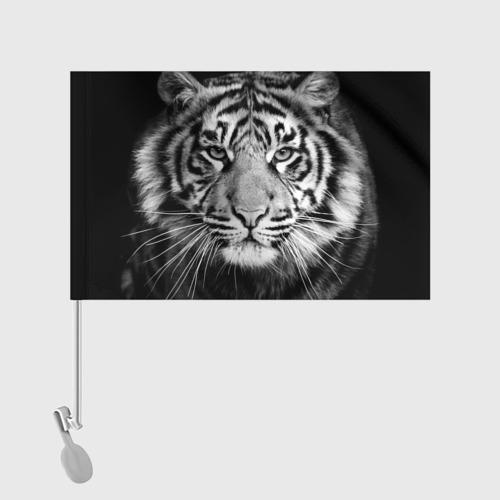 Флаг для автомобиля Красавец тигр Фото 01