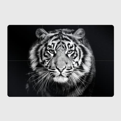 Магнитный плакат 3Х2 Красавец тигр