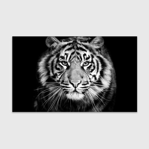 Бумага для упаковки 3D Красавец тигр Фото 01