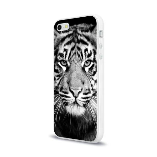 Чехол для Apple iPhone 5/5S силиконовый глянцевый Красавец тигр Фото 01