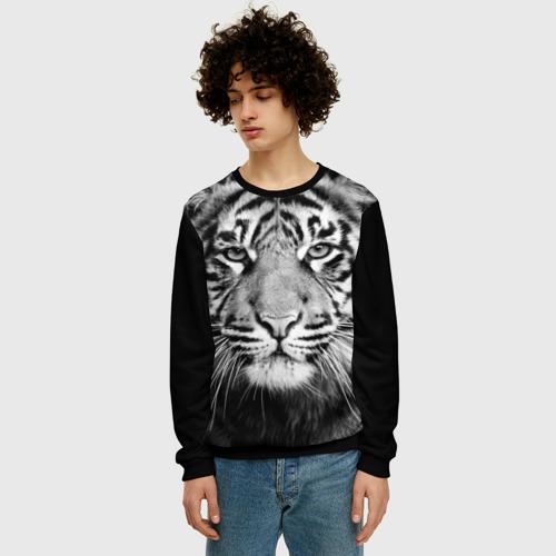 Мужской свитшот 3D Красавец тигр Фото 01