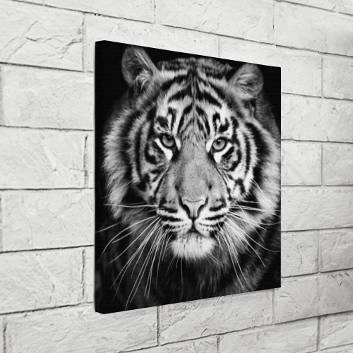 Холст квадратный Красавец тигр Фото 01