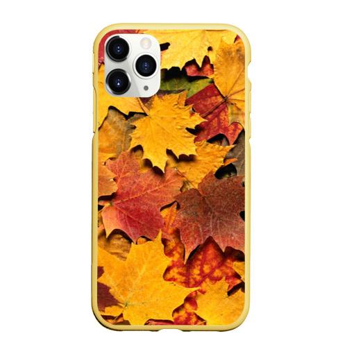 Чехол для iPhone 11 Pro Max матовый Осень на дворе Фото 01