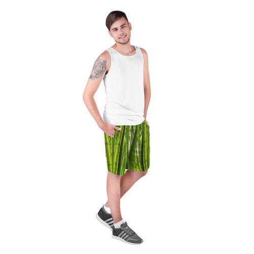 Мужские шорты 3D  Фото 03, Бамбук
