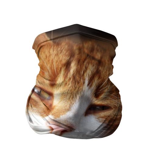 Бандана-труба 3D Кошки