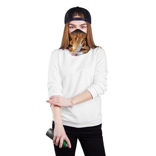 Бандана-труба 3D  Фото 02, Кошки