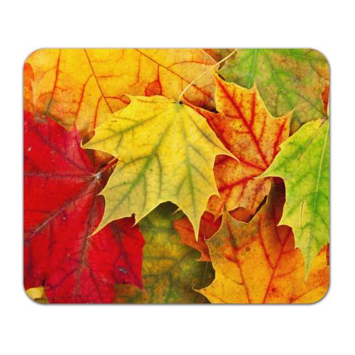 Коврик прямоугольный Кленовые листья от Всемайки