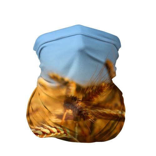 Бандана-труба 3D  Фото 01, Пшеница