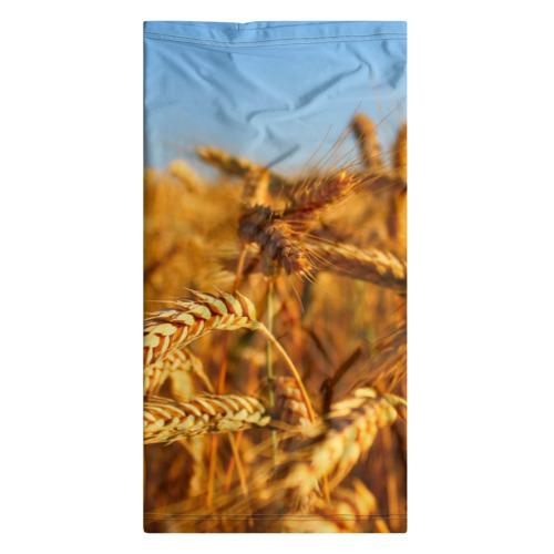 Бандана-труба 3D  Фото 07, Пшеница