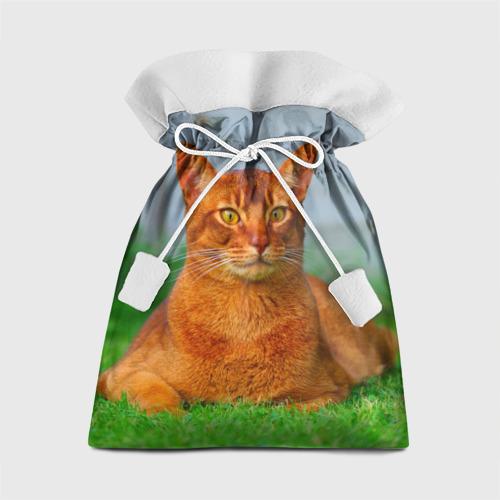 Подарочный 3D мешок Кошка