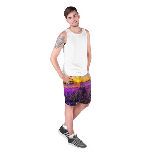 Мужские шорты 3D Лавандовое поле Фото 01