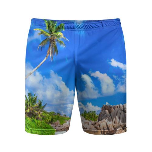 Мужские шорты 3D спортивные Сейшельские острова