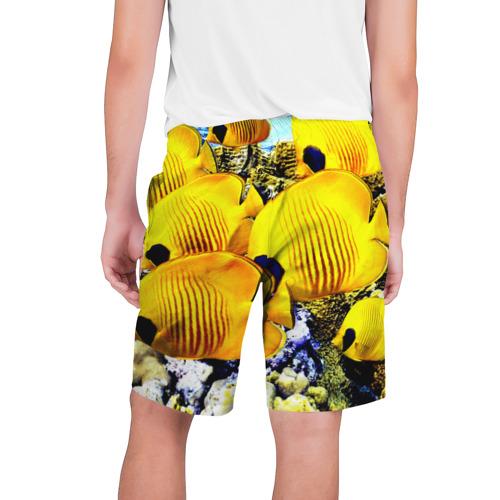 Мужские шорты 3D  Фото 02, Рыбки