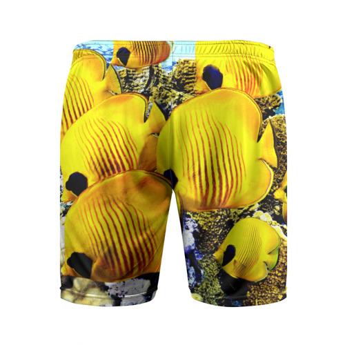 Мужские шорты 3D спортивные  Фото 02, Рыбки