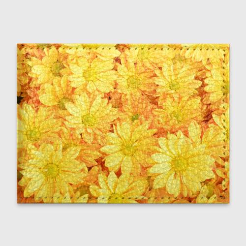 Жёлтые хризантемы