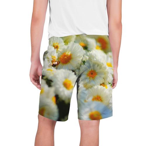 Мужские шорты 3D  Фото 02, Хризантемы