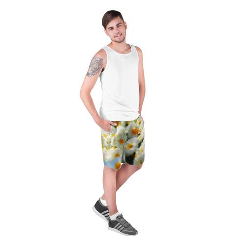 Мужские шорты 3D  Фото 03, Хризантемы
