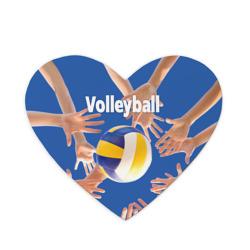 Волейбол 24