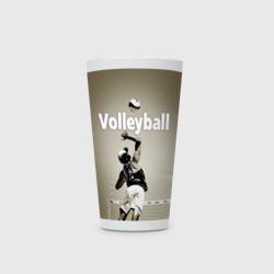 Волейбол 78