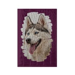 Симпотяга волк