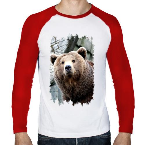 Мужской лонгслив реглан  Фото 01, Медведь
