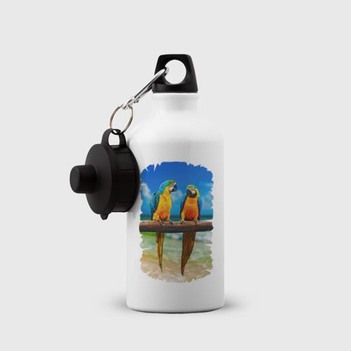 Бутылка спортивная  Фото 03, Попугаи