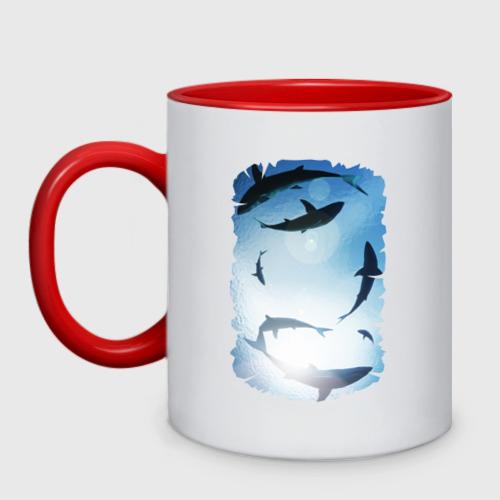 Кружка двухцветная Акулы