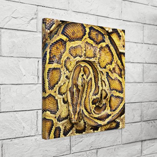 Холст квадратный  Фото 03, Змея
