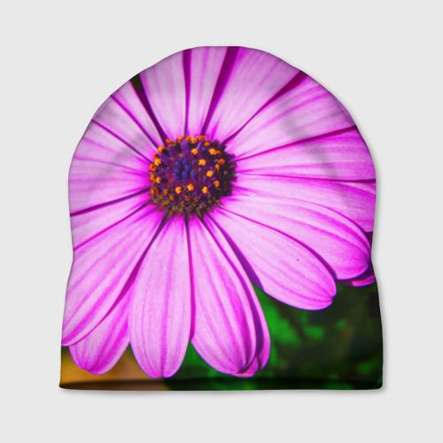 Шапка 3D  Фото 01, Цветы