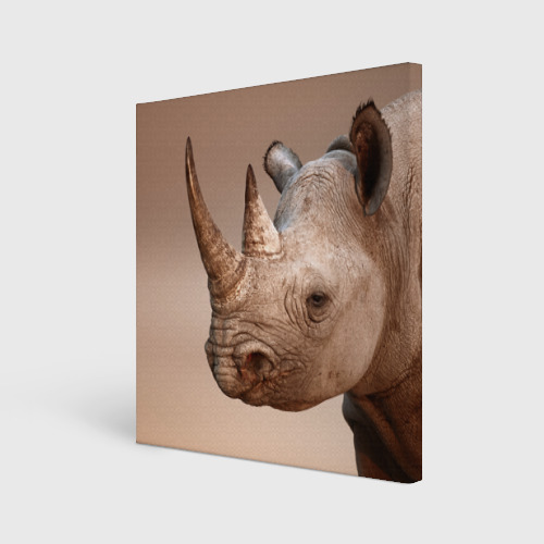 Холст квадратный  Фото 01, Носорог