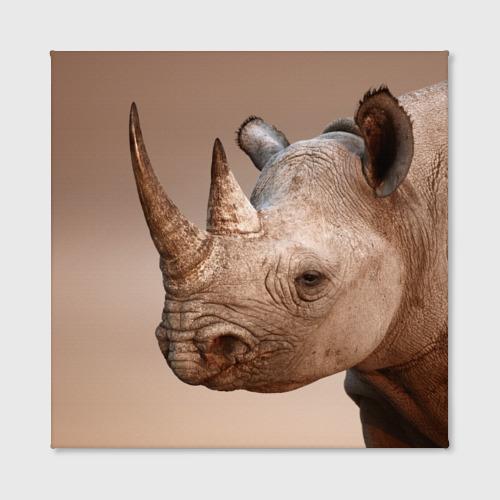 Холст квадратный  Фото 02, Носорог