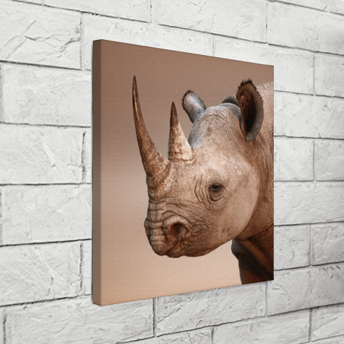 Холст квадратный  Фото 03, Носорог