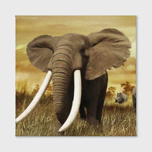 Холст квадратный  Фото 02, Могучий слон