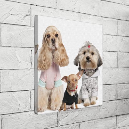 Холст квадратный  Фото 03, Дивные собачки