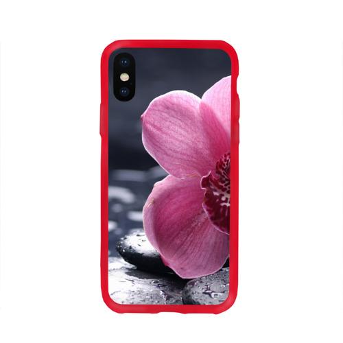 Чехол для Apple iPhone X силиконовый глянцевый Цветы Фото 01
