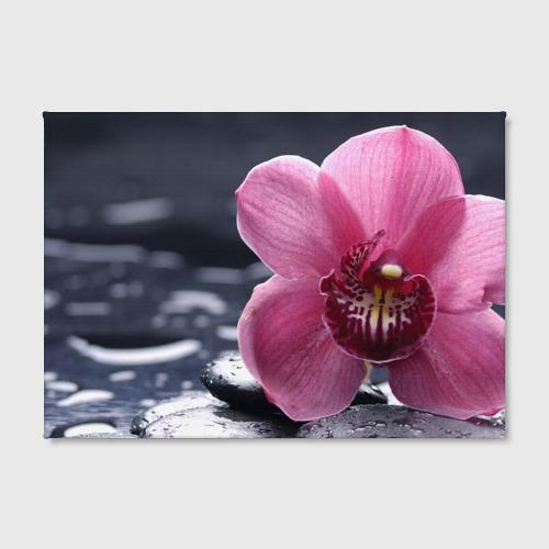 Холст прямоугольный Цветы Фото 01