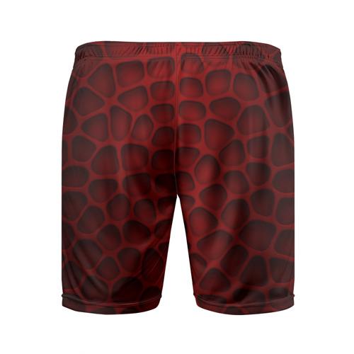 Мужские шорты 3D спортивные  Фото 02, Шкура дракона