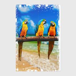Попугаи (retro style)