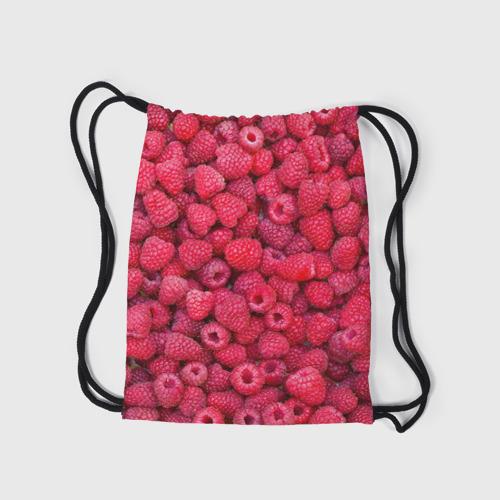 Рюкзак-мешок 3D  Фото 05, Малинки