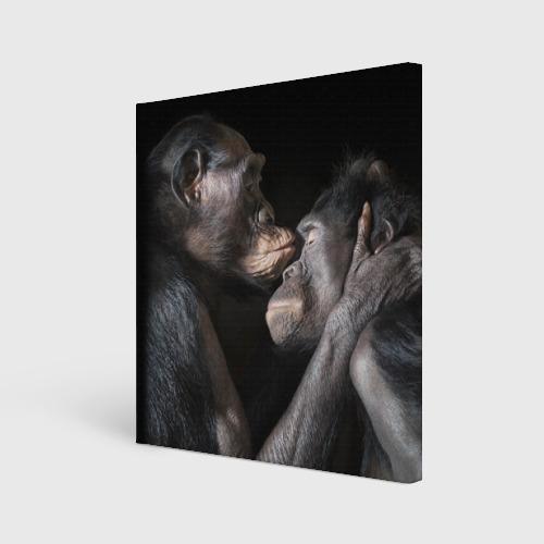 Холст квадратный  Фото 01, Шимпанзе