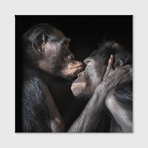 Холст квадратный  Фото 02, Шимпанзе