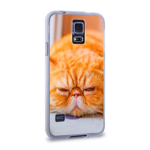 Чехол для Samsung Galaxy S5 силиконовый  Фото 02, Рыжий кот