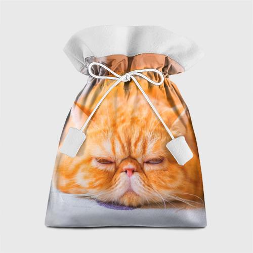 Подарочный 3D мешок Рыжий кот