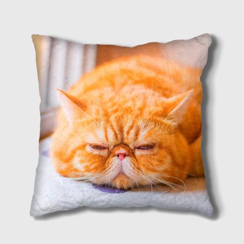 Подушка 3D Рыжий кот Фото 01