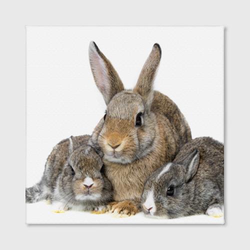 Холст квадратный  Фото 02, Кролики