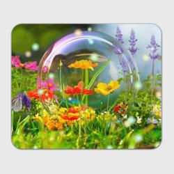 Цветы и мыльный пузырь