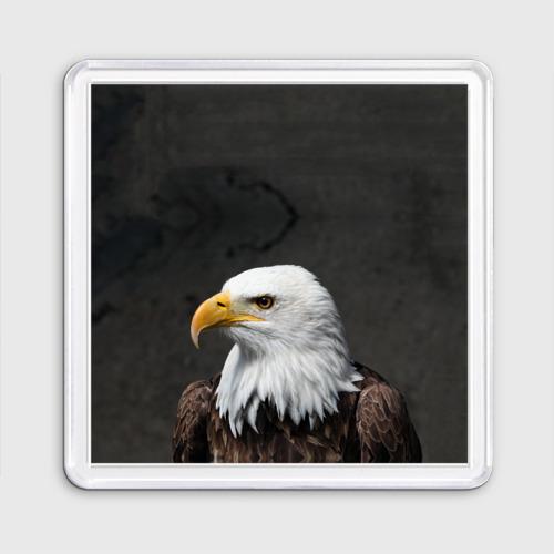 Орел 3