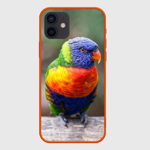 Чехол для iPhone 12 Pro Mini Попугай Фото 01